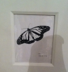 India Ink Butterfly