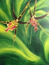 Orchids of Another Color..