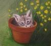 Kitty in a Flower Pot