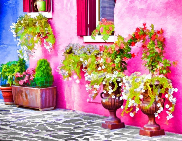 Summer Flowers -  Burano